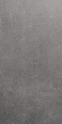 Original Style View Grey Tile 300x600mm